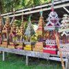 Mae Sariang Tours