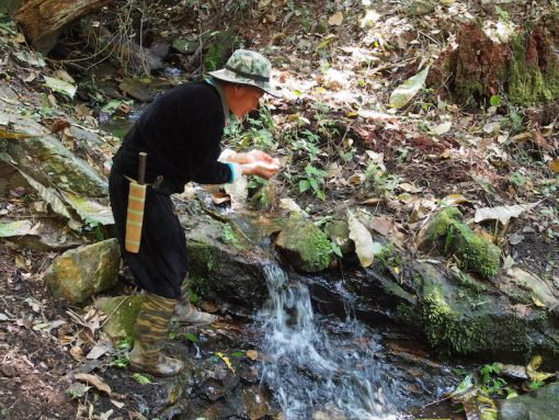 Water source on Doi Pui Doi Suthep Day Trekking
