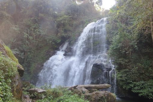 Doi Inthanon Day trekking