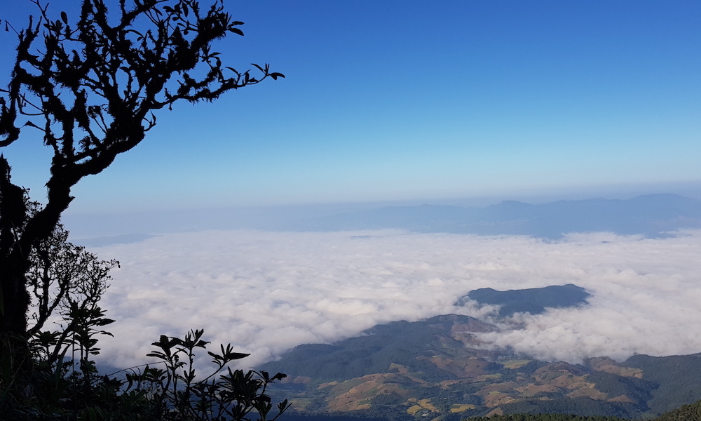 Kew Mae Pan Nature Trail Doi Inthanon National Park Sea of Clouds Doi Inthanon trekking