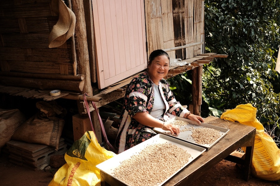 woman sorting coffee beans