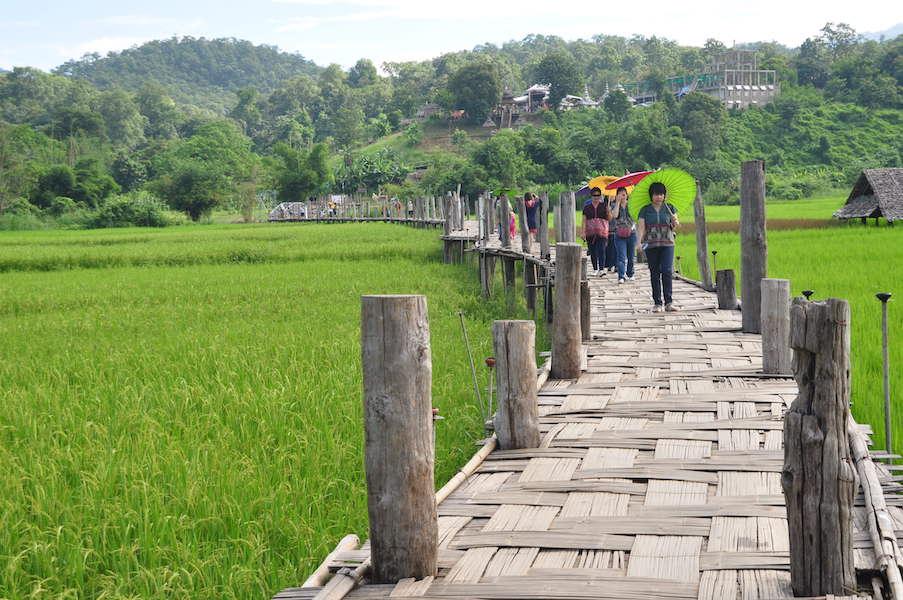 People on a bamboo bridge