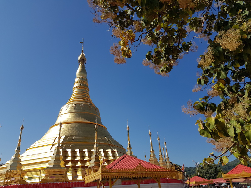 Golden pagoda with tree terms and conditions