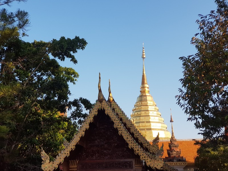 Golden chedi with trees